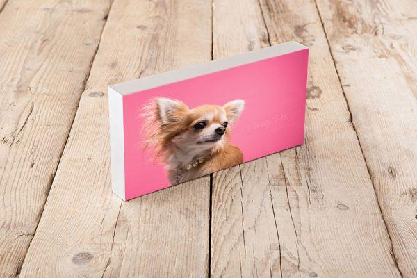 fotoblok duo hondenfotografie