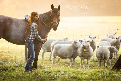 portfolio paardenfotografie