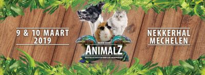 Animals 2019 dierenbeurs