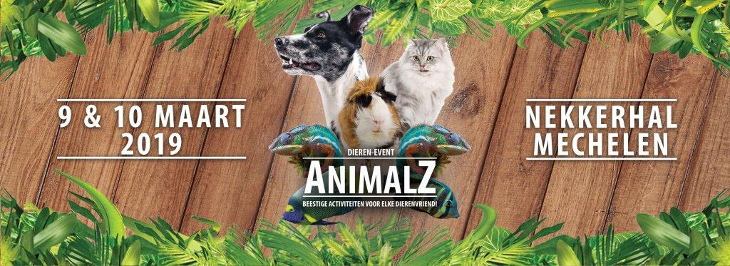 Animalz 2019